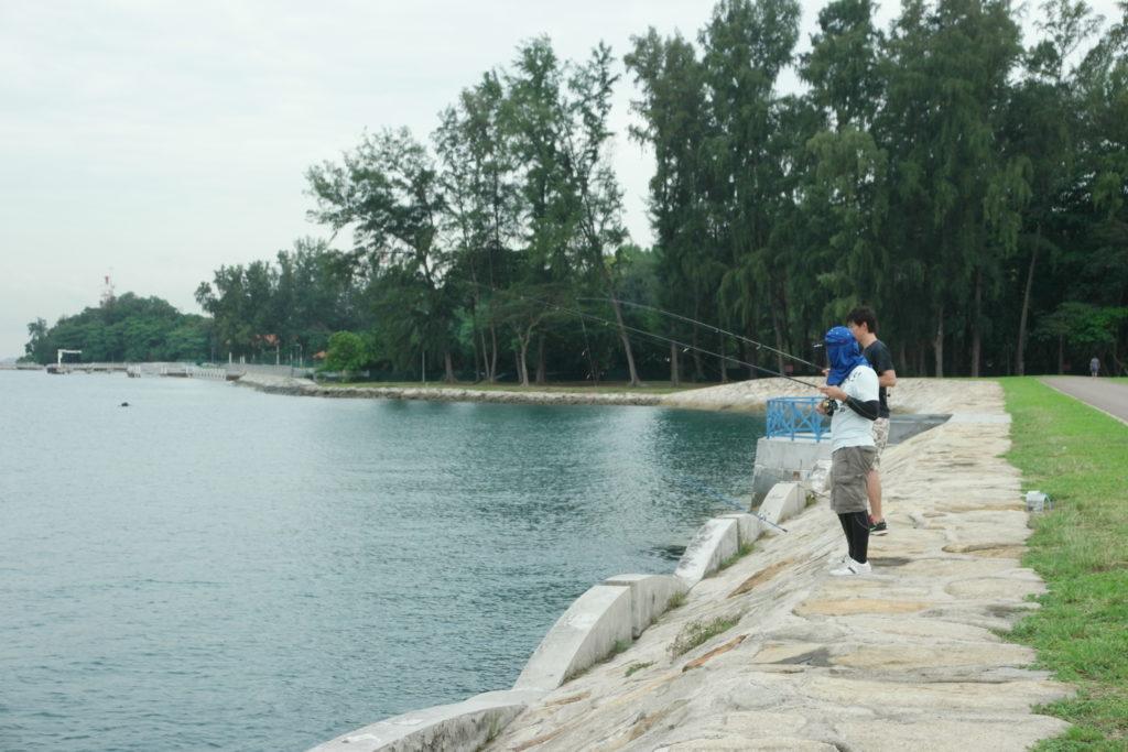 Seems like a popular spot for fishing