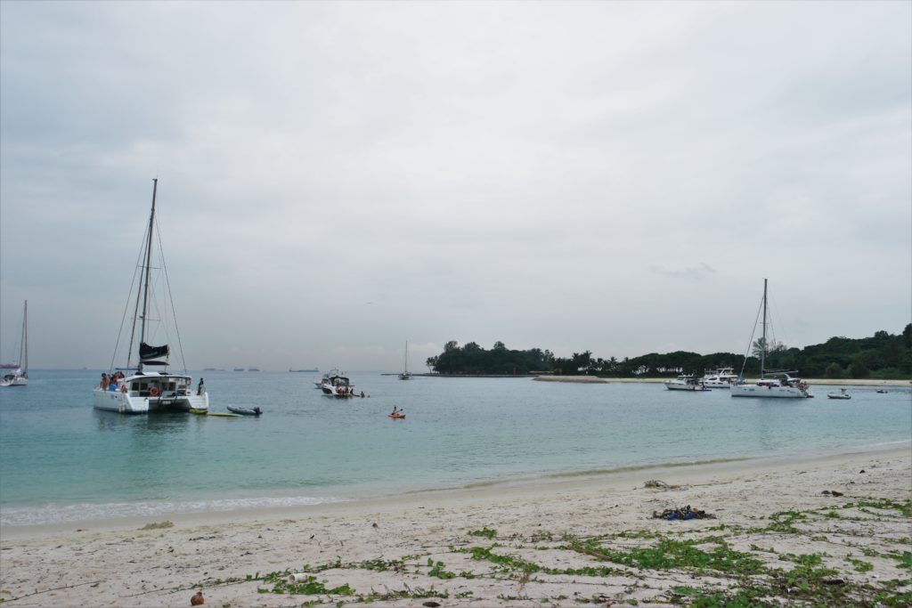 Chartered yachts parking near the beach